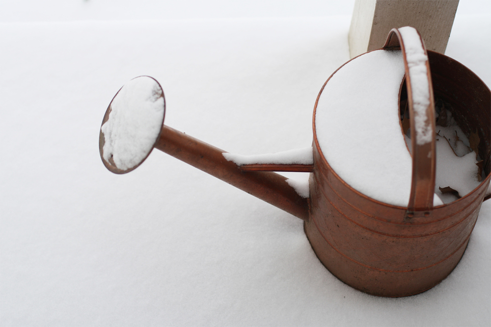 copper-watering-can