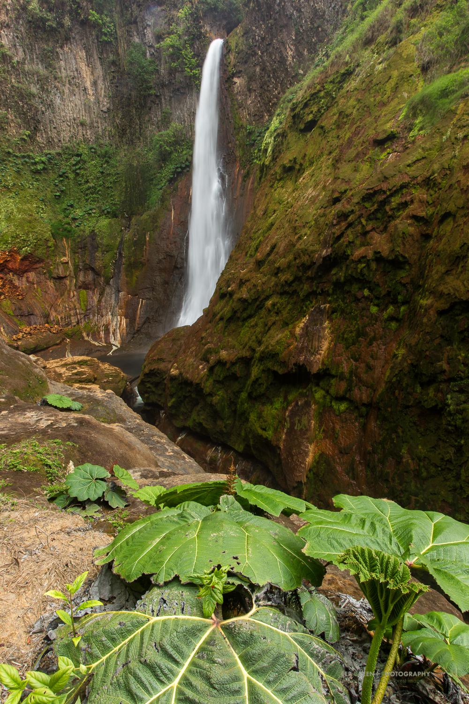 DGP Costa Rica landscapes-844.jpg