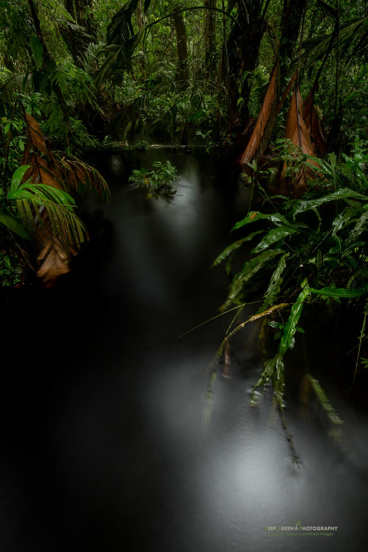 DGPstock-landscapes-160.jpg