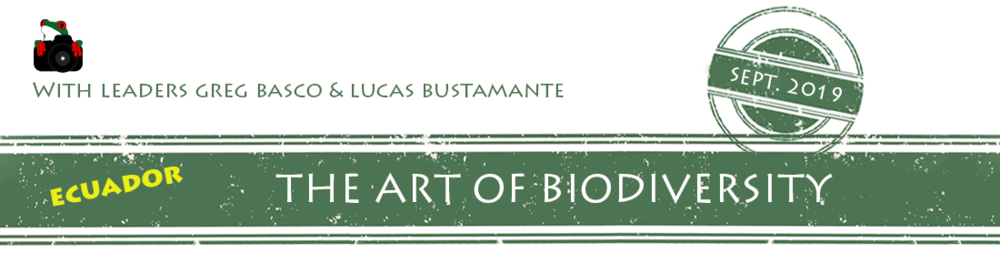 Ecuador-Art-of-Bio-2019-banner.png