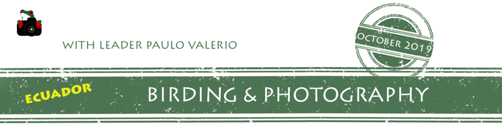ecuador-birding-photo-2019-workshop-banner.png