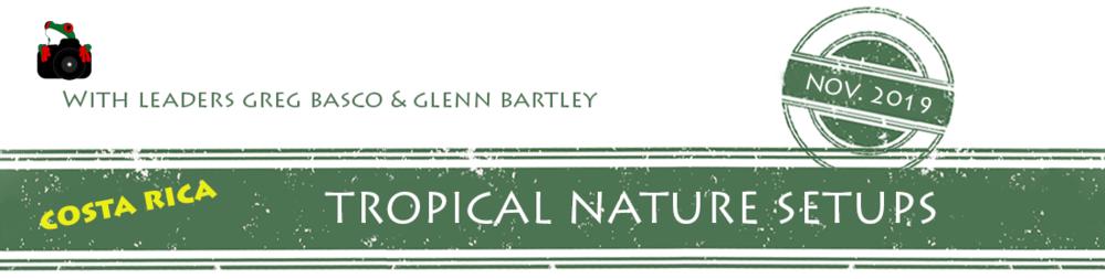 tropical-nature-setups-2019-banner.png
