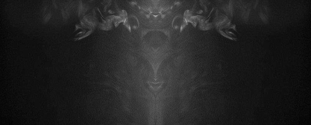 Untitled, 2015, archival pigment print, 40X100 cm