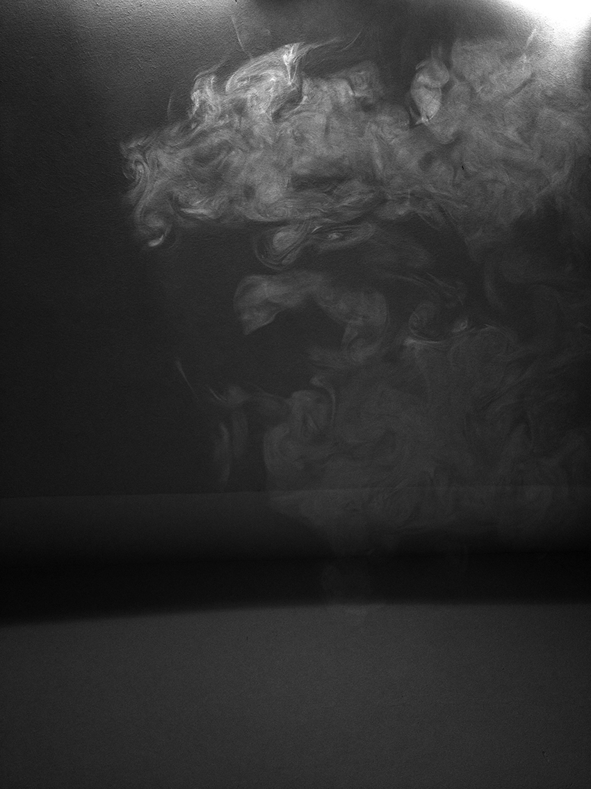The Dragon, 2015, archival pigment print, 90x67 cm