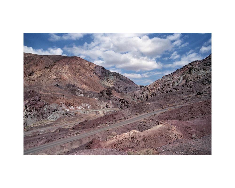 Roadrunner Territory - Mojave Desert