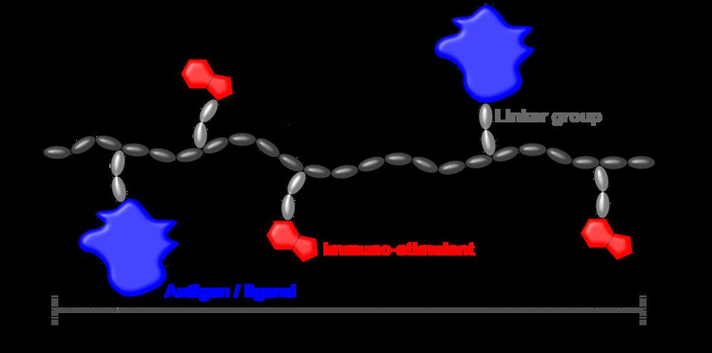 160316.5 Polymer morphologies.png