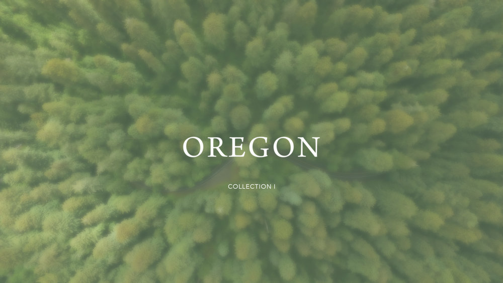 OREGON FOREST AERIAL.jpg