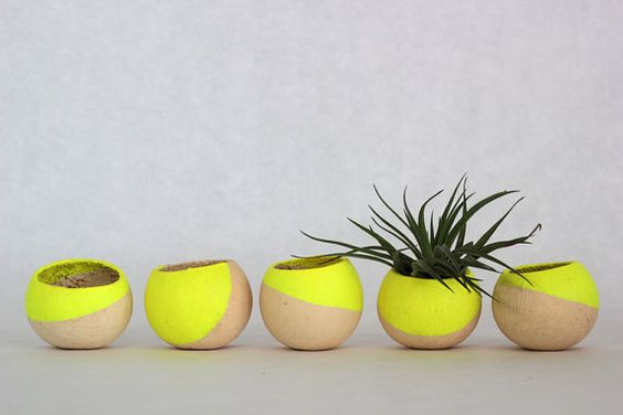 Citron 9.jpg