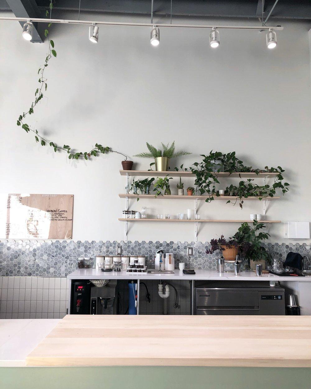 Botany Coffee - Quarter-Life Living