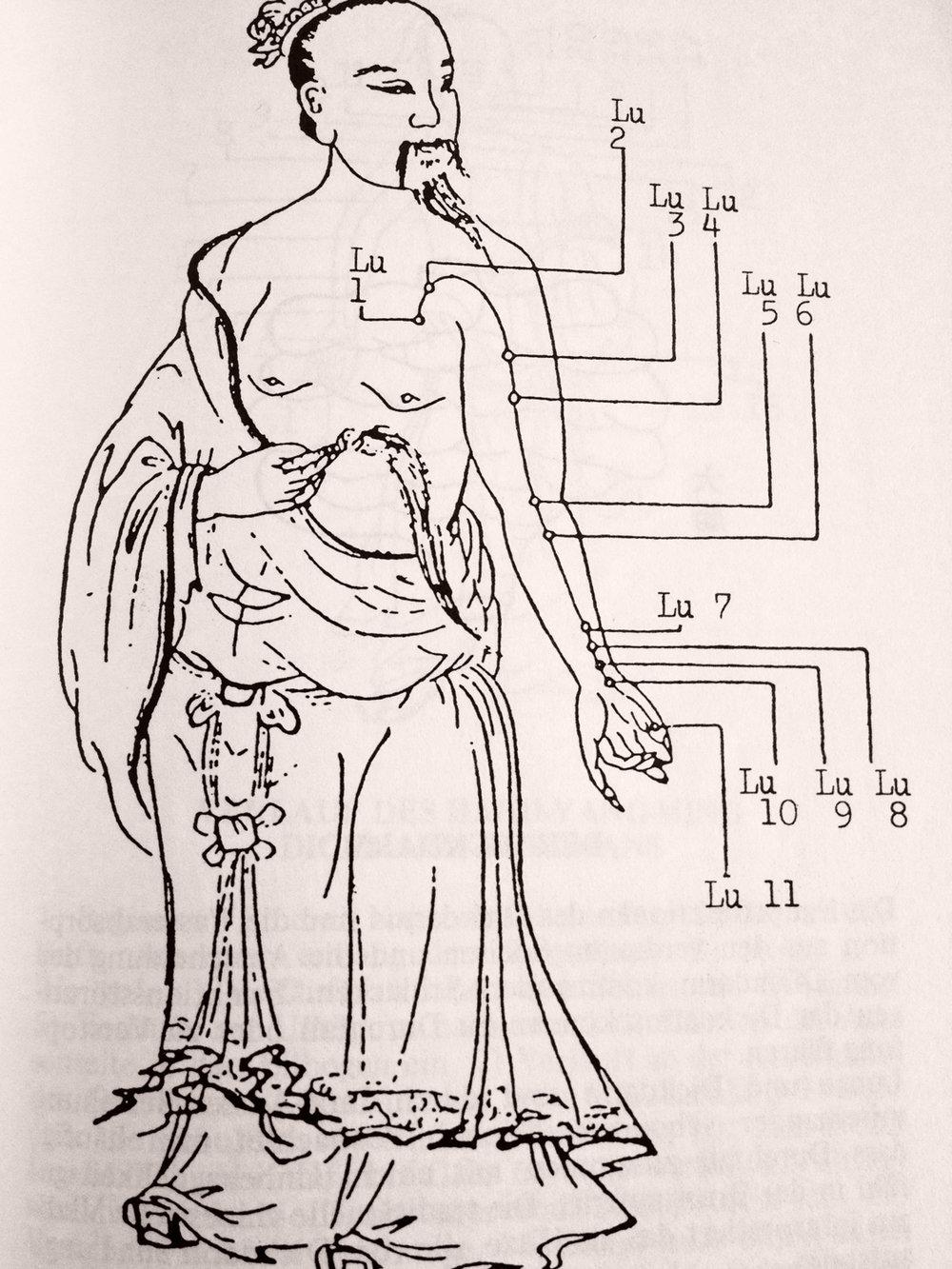 tcm-praxis-gioconda-baenziger-zurich-meridiane-1.jpg