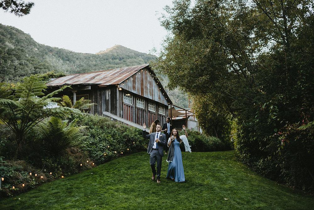 amanda-trevor-wedding-517.jpg
