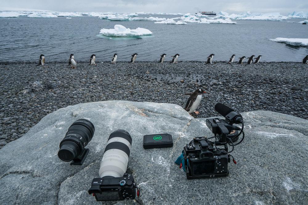 12-2017-Antarctica-a7r2-gnarbox-DSC04066.jpg