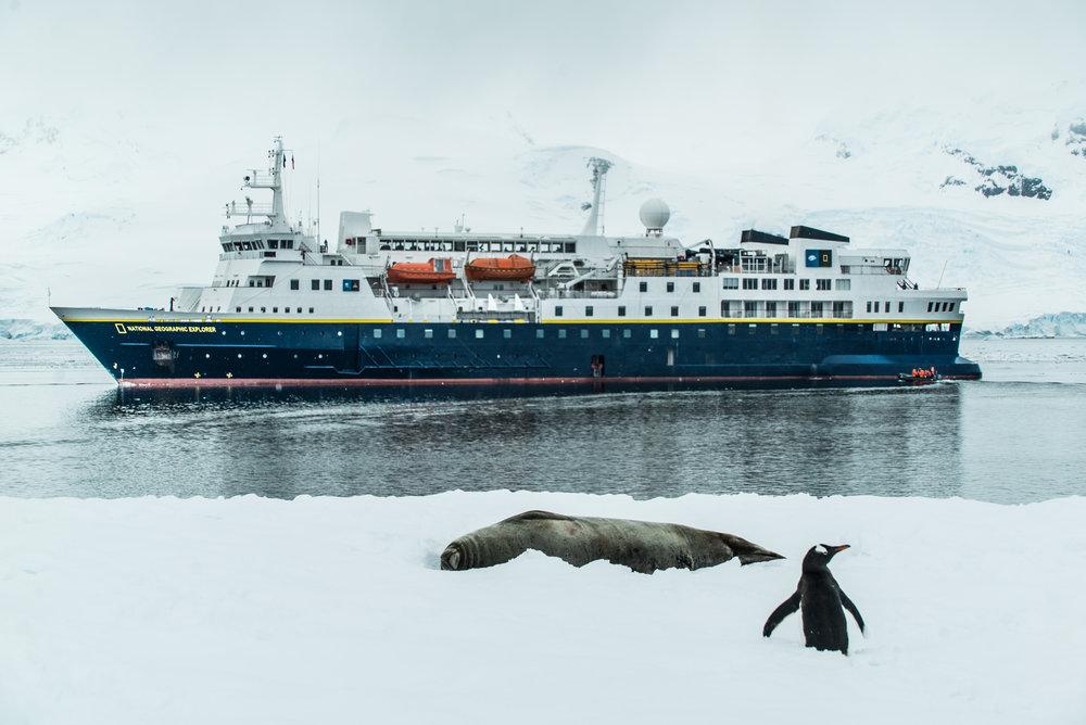 12-2017-Antarctica-a7s2-DSC06945.jpg