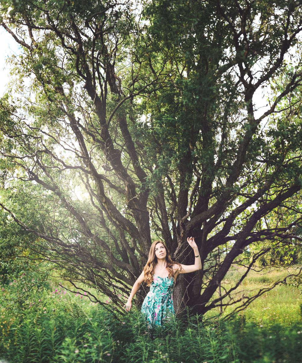 Caedytree.jpg