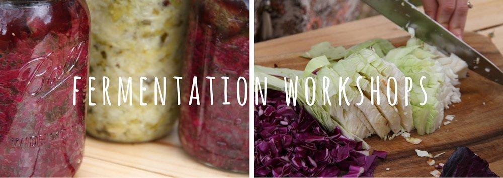 fermentation workshops.jpg