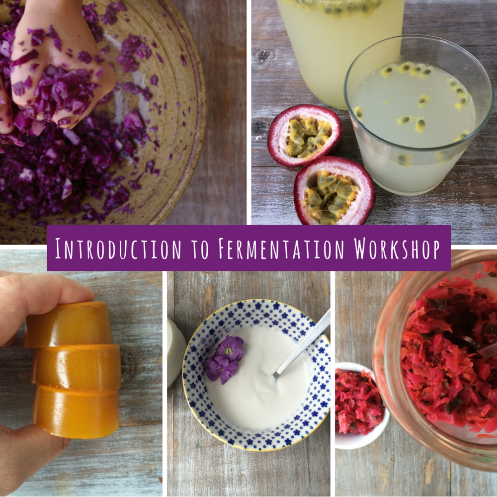 Copy of intro to fermentation workshop.png