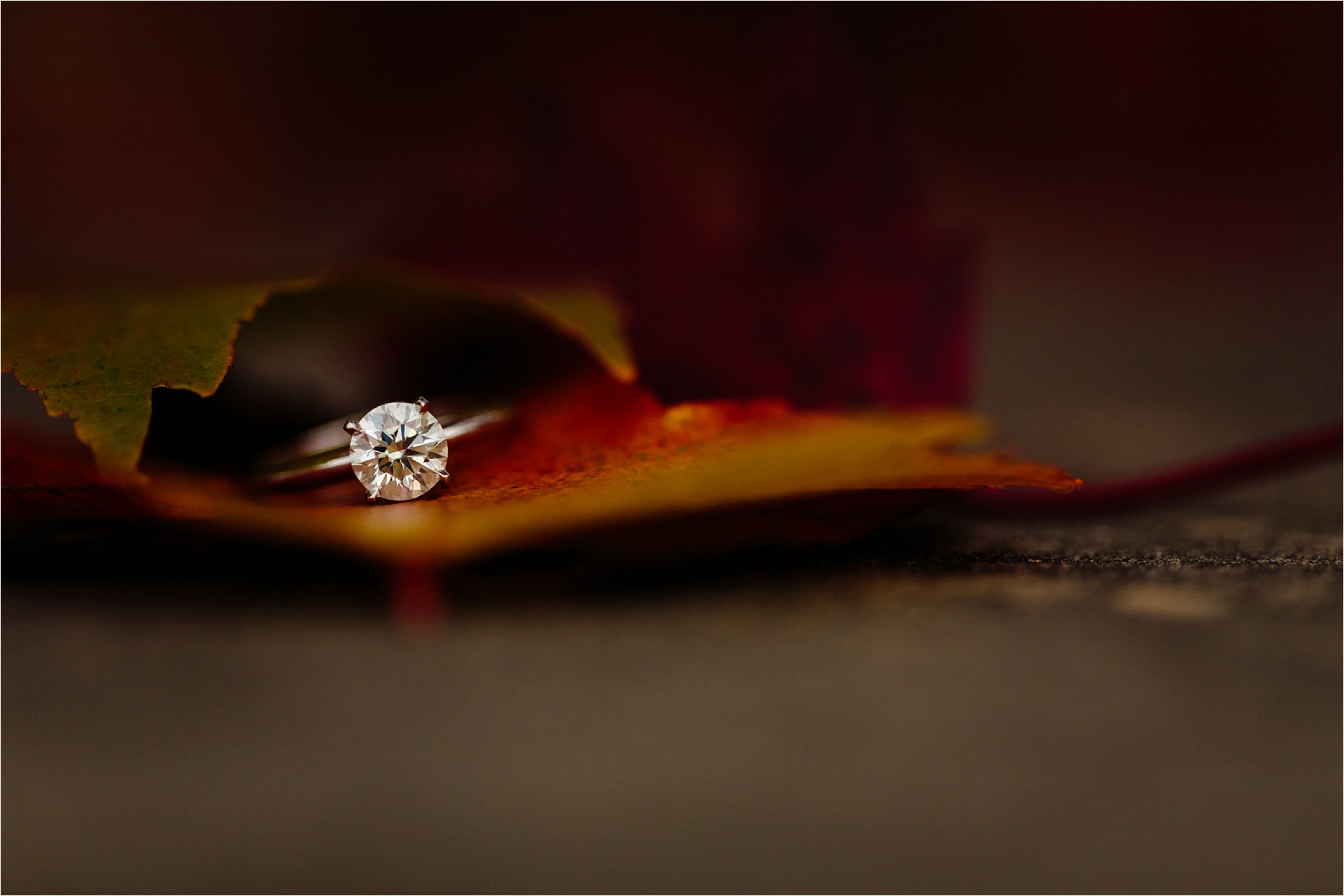 greenville-engagement-session-fall-colors-17_blog.jpg
