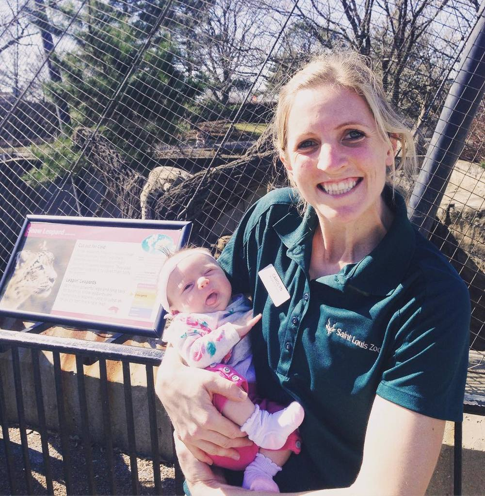 Ok, @anniebananie314 you asked for a pic a day, so here is today's! Isabella's first trip to visit Aunt Carolyn at work! Meeting Pujii Snow Leopard at Big Cat Country. #isabellagrace #auntcarely #stlzoo  (at Saint Louis Zoo)