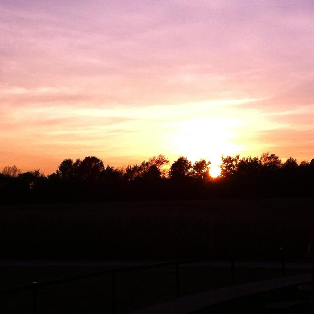 Sunset at the corn maze