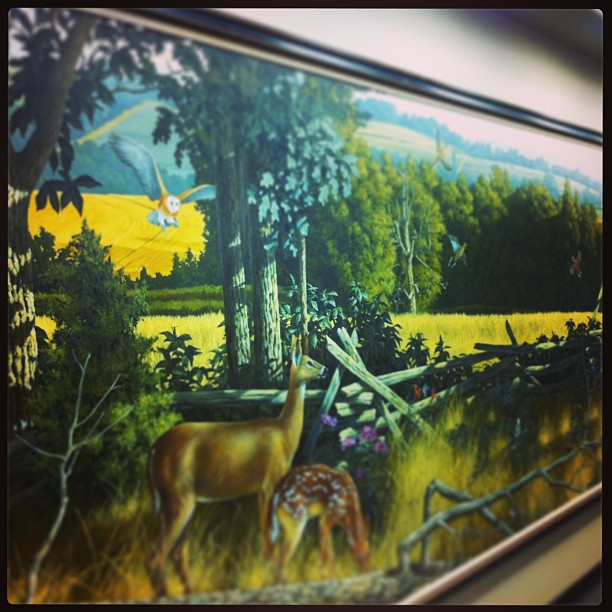 Awesome mural of Missouri wildlife in the library