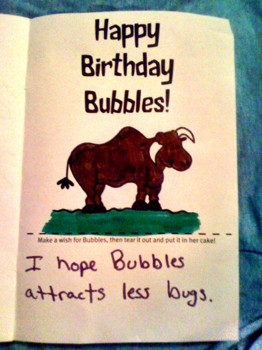 "And now a selection of some of the best of Bubbles' birthday wishes… Let's start out with this one. ""I hope Bubbles attracts less bugs."" Who wouldn't want to attract less bugs for her birthday?"