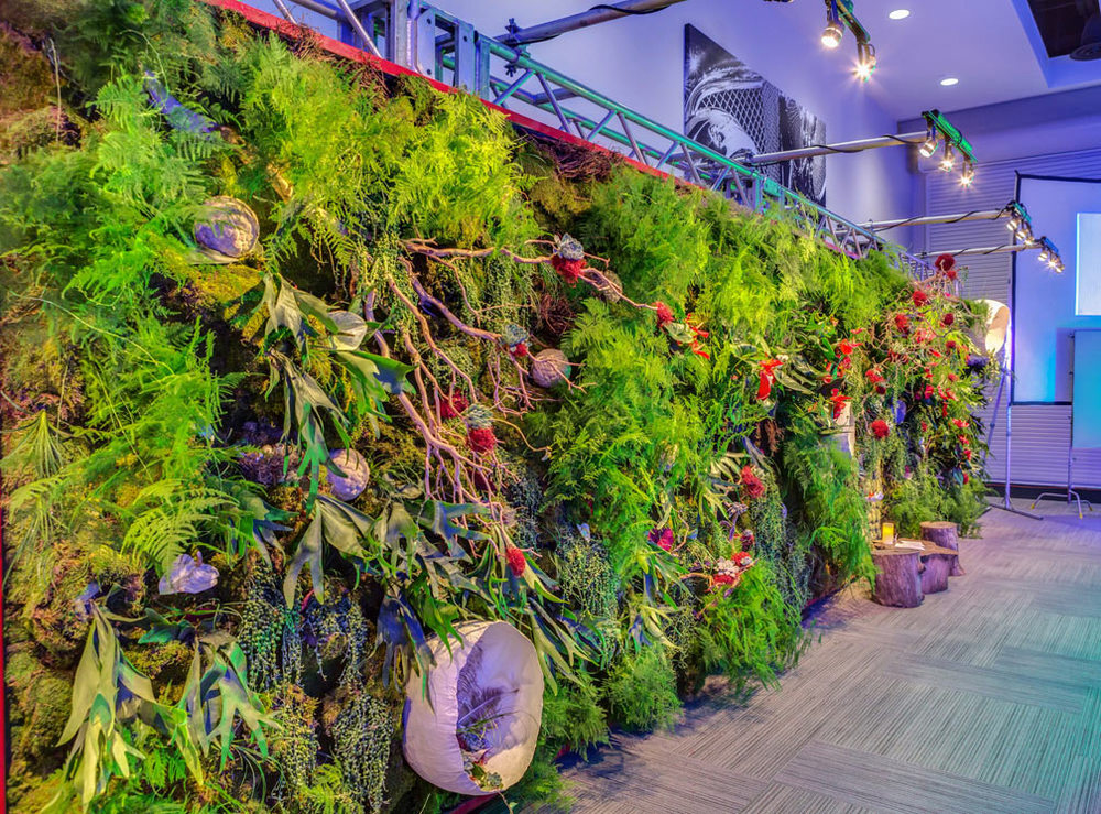 TEDxAustin Living Wall