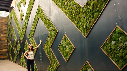 Whole Foods Living Moss Wall