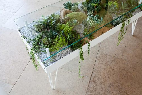 terrarium furniture. Steel Life Series - Coffee Table Terrarium Furniture T