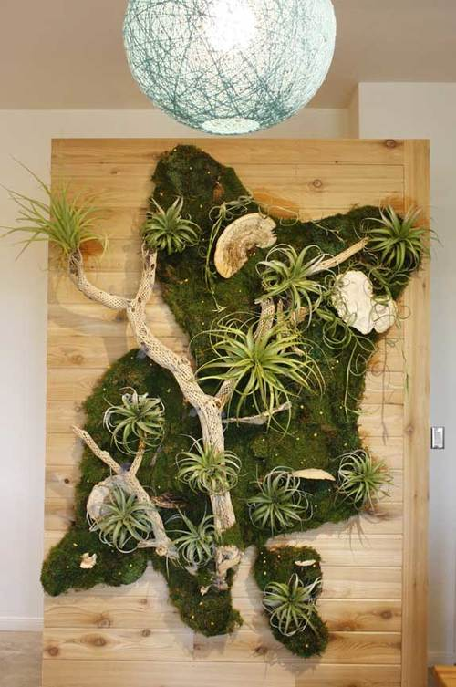 Plant Wall Art living walls — articulture designs