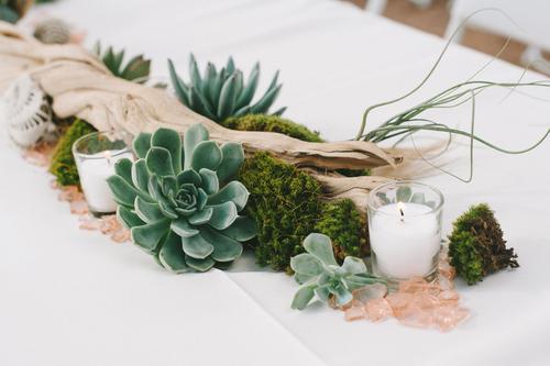 Driftwood Moss Succulent Centerpiece Nbsp