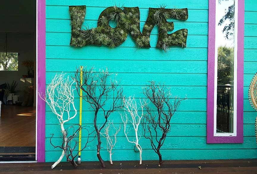 manzanita-branches-web.jpg