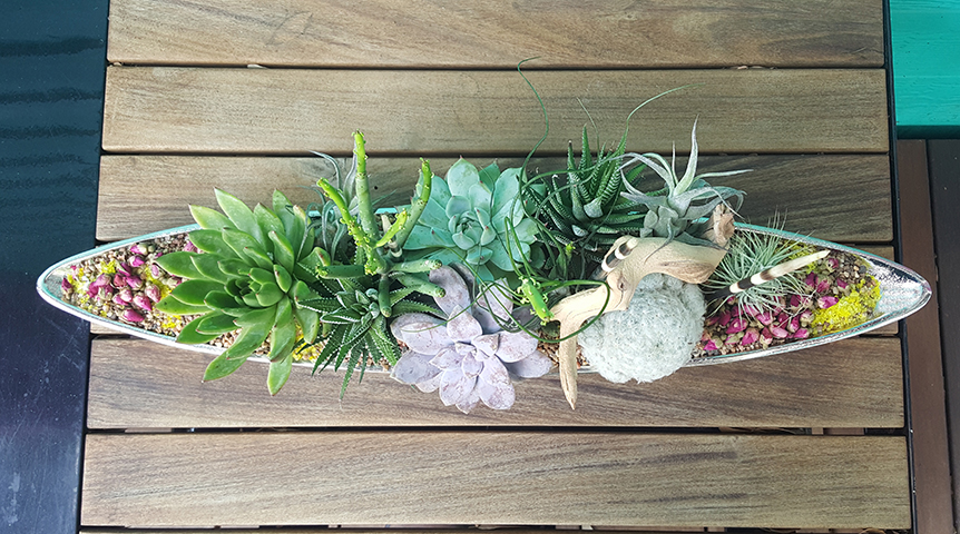modern meets vintage succulent arrangement  |  hundreds of options in our boutique