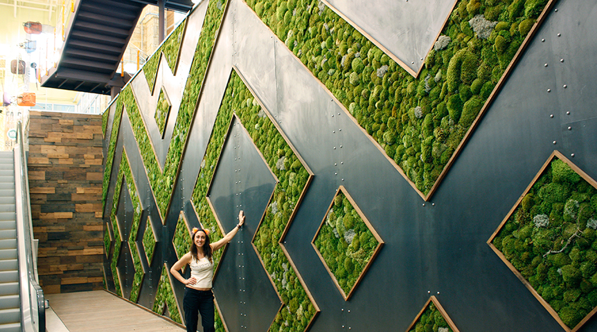 living moss wall  |  Whole Foods Austin  |  2013