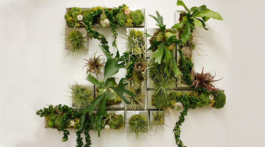 """do box me in""  