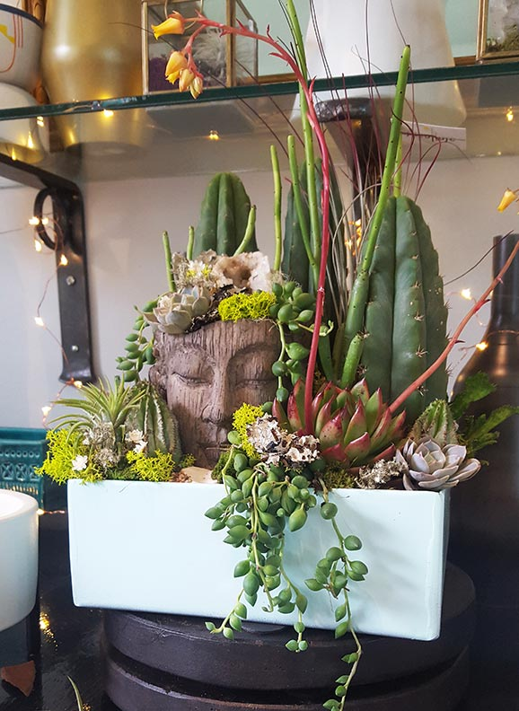 Interior Plant Design Botanical Art And Premium