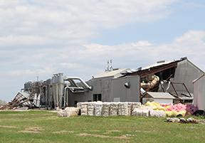 Harvey-photo-building-crop.jpg