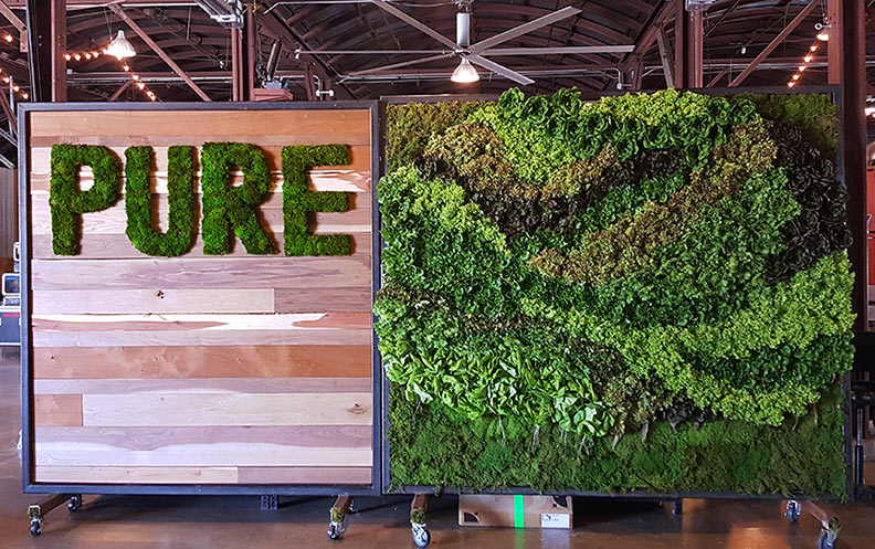 Lettuce Wall For SXSW Eventu0026nbsp; |u0026nbsp; Used By Chefs ...