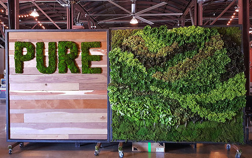 Corporate Event Decor Living Walls Bespoke Plantscapes And Plant