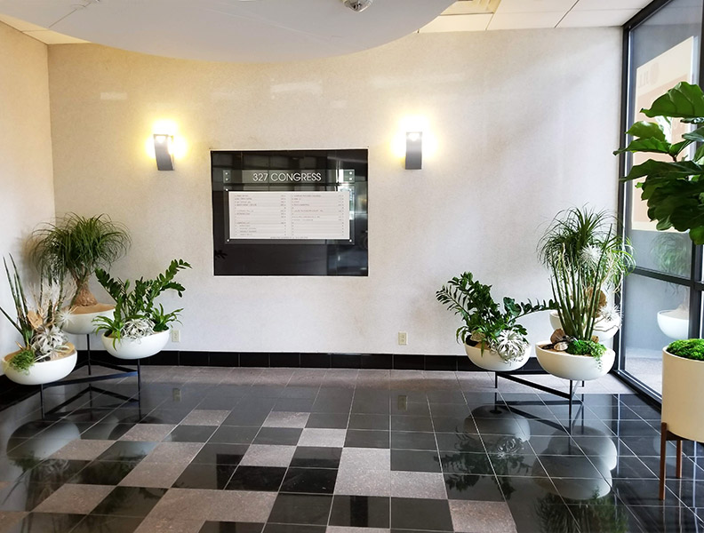 Modern Indoor Plant Arrangement Trios + Fiddle Leaf Fig