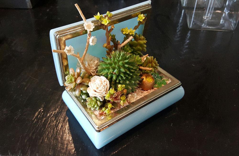 jewelry-box-planter-sm.jpg