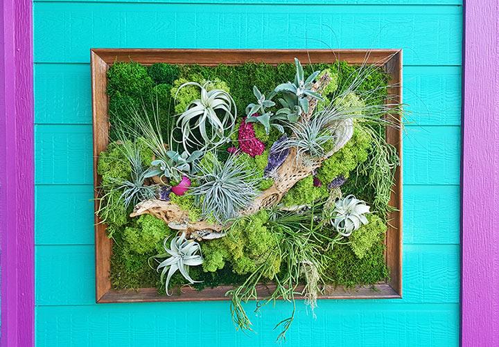 art-frame-living-wall-crop-web.jpg