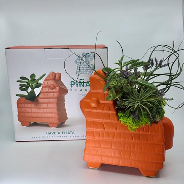 llama-pinata-planter.jpg