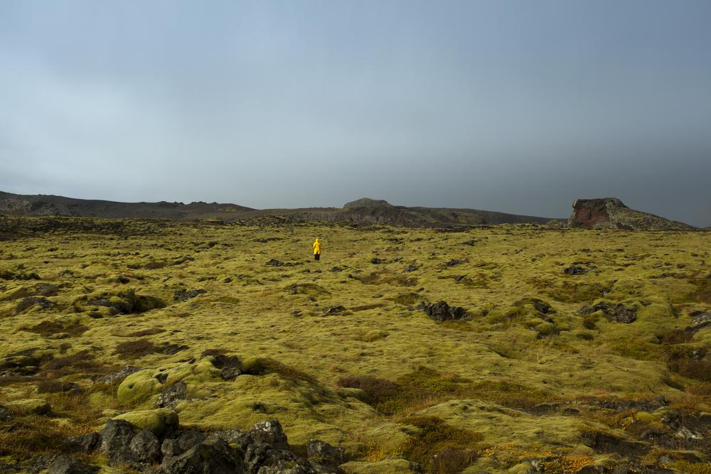 CAMPO DE MUSGO- Residencia en Islandia, Octubre, 2013.
