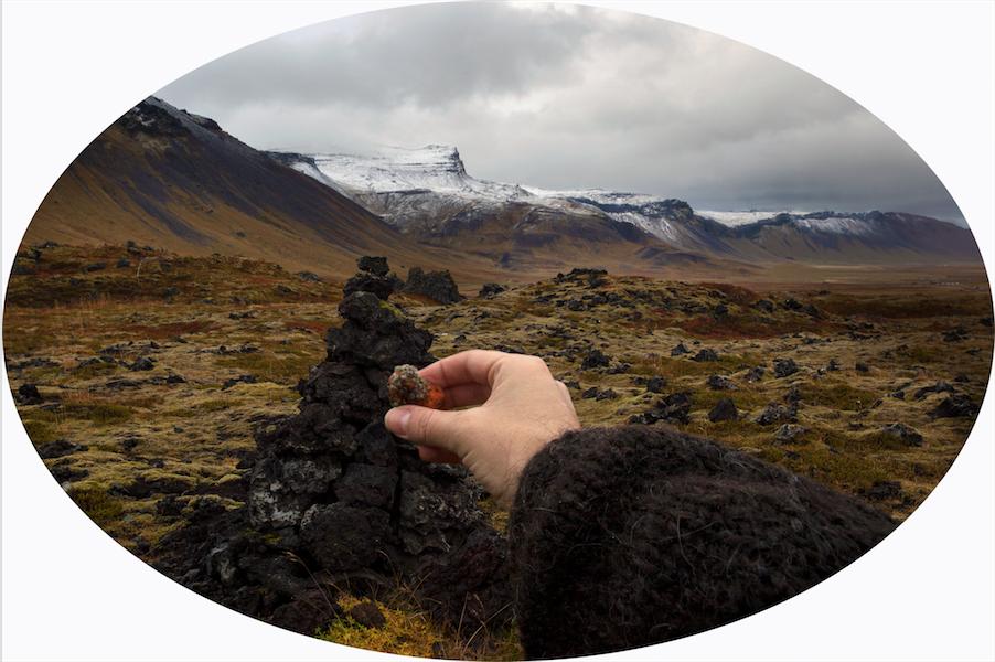 Muestra de musgo tomada de Snaefellsjökull, Islandia. Septiembre -2013