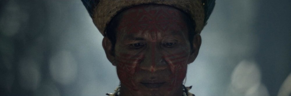 """Copy of Guaraná """"Colheita"""""""