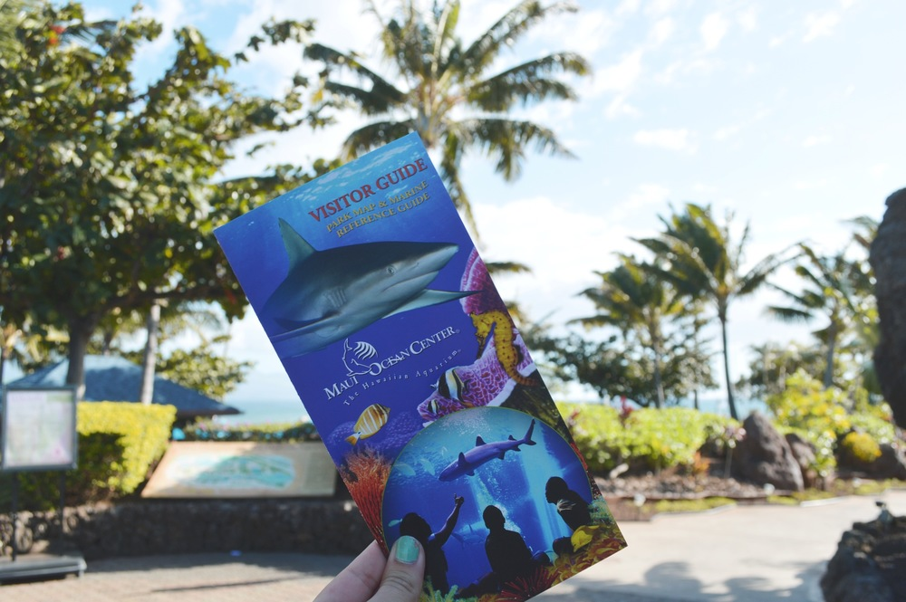 Maui Aquarium