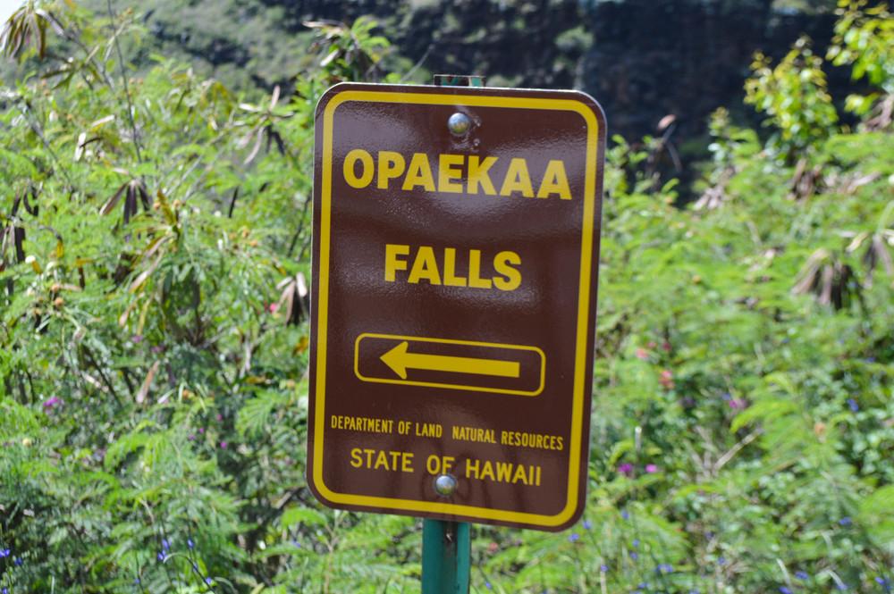 Opeakaa Falls + SaltWaterVibes