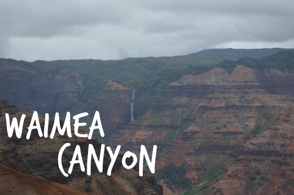 Waimea Canyon + SaltWaterVibes