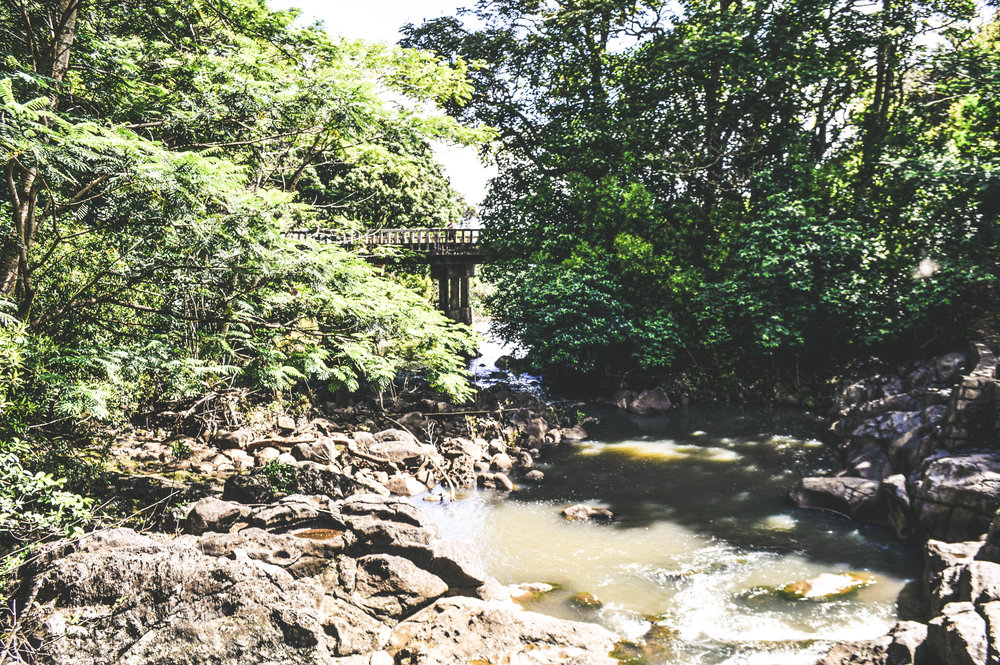 Road to Hana + SaltWaterVibes