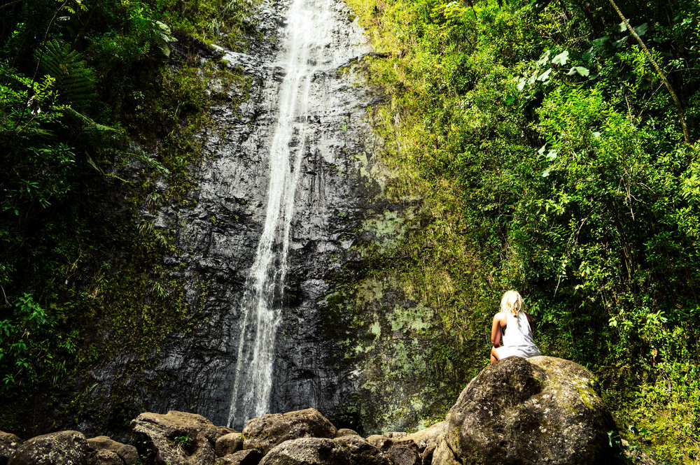 Manoa Falls Haike + SaltWaterVibes
